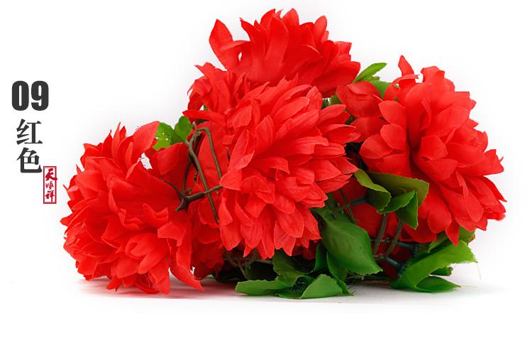 红色有叶拉花(12朵)