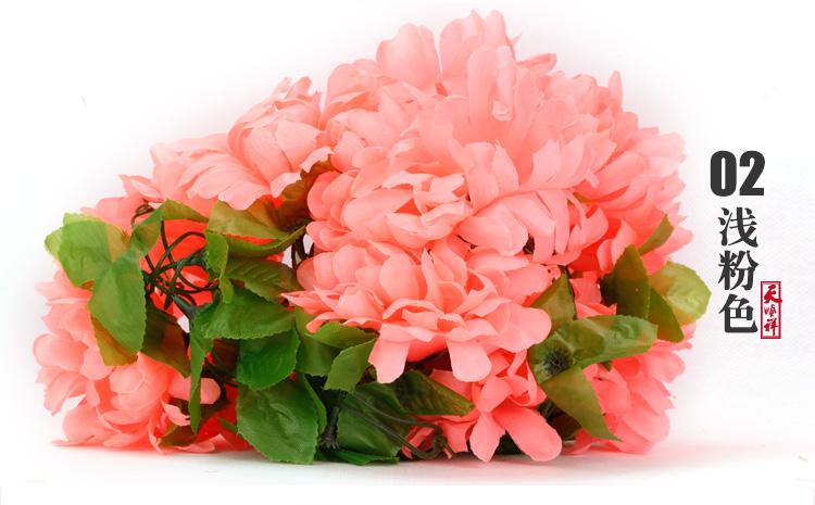 浅粉色有叶拉花