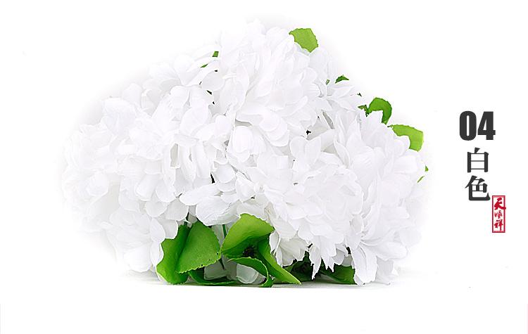 白色有叶拉花(12朵)