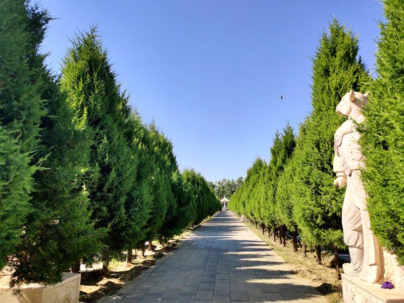 永福墓园环境