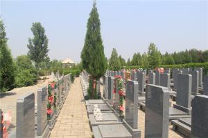 公墓墓区景观