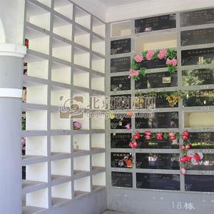 壁葬鲜花壁葬
