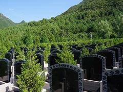 十三陵景仰园最新墓地价格多少钱?