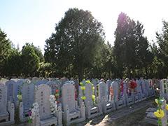 北京墓地产权一般多少年?到期后怎么续费?