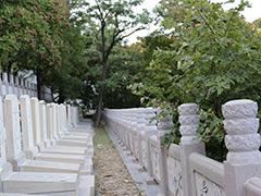 北京金山陵园电话多少地址在哪?现在能预约扫墓吗?