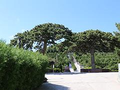 海淀陵园有几处?哪家公墓值得推荐?