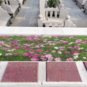 天福园花坛葬