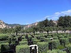 北京市海淀区长安陵园墓地价格风水怎样?