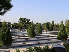 在哪查北京丰台太子峪墓地电话?