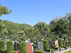 北京的公墓是怎么销售的?家属如何买墓地划算?