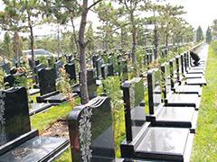 北京通州墓地张家湾生态墓园是合法公墓吗?陵园价格行情怎么样?