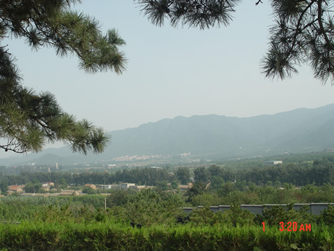 温泉墓园显龙山三炷香