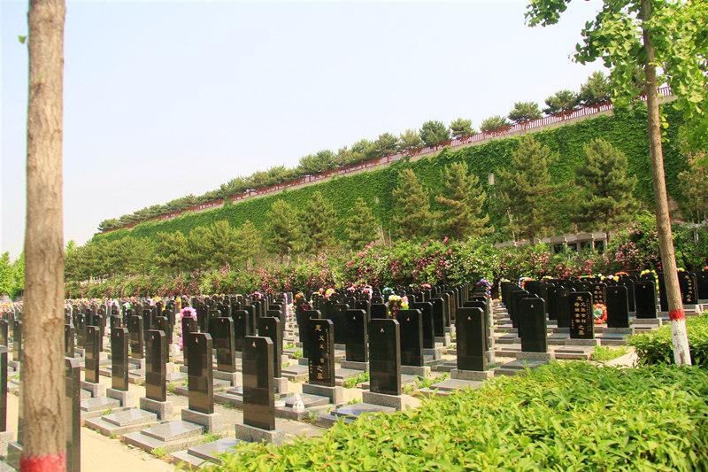 灵山宝塔陵园墓区环境