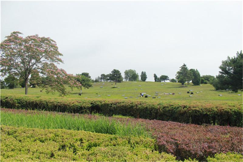 华龙皇家陵园景观
