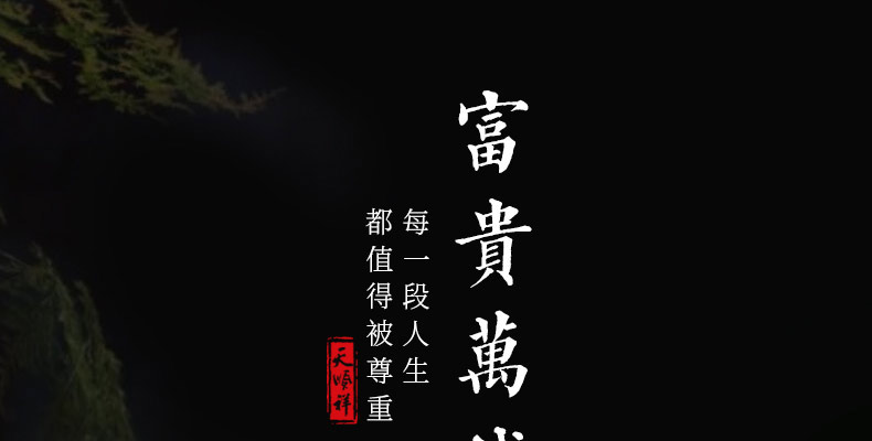 非洲小黑檀-富贵万代_03.jpg