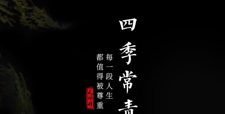 非洲小黑檀-四季常青_03.jpg