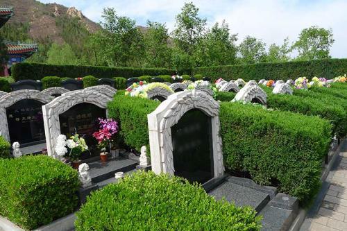 天寿陵园墓区环境