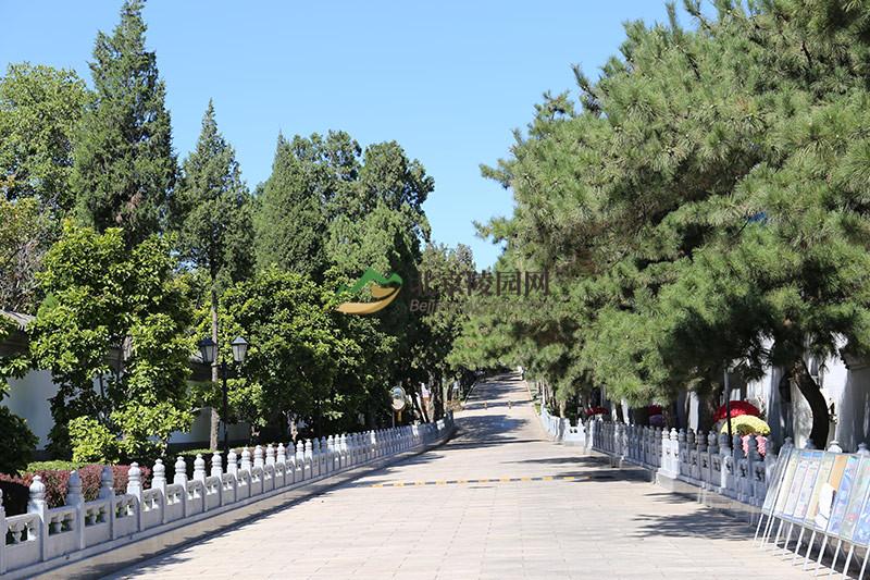 八宝山革命公墓环境