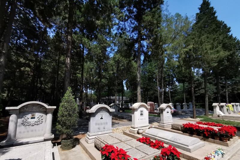 八宝山革命公墓墓区环境