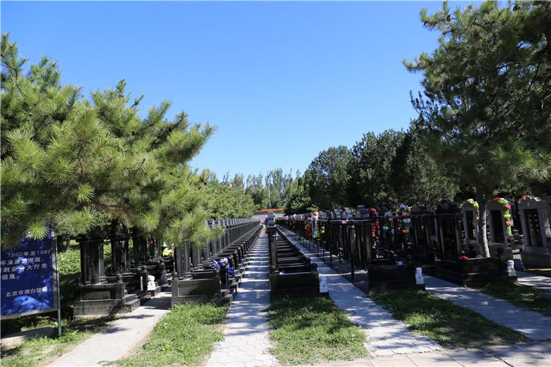 潮白陵园墓区环境