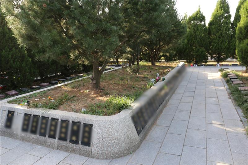 太子峪陵园树葬
