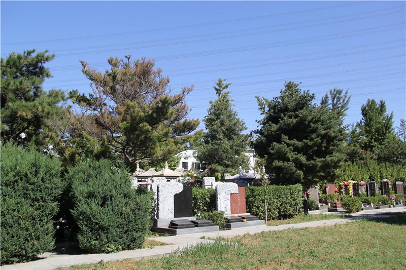 北京潮白陵园墓区绿化
