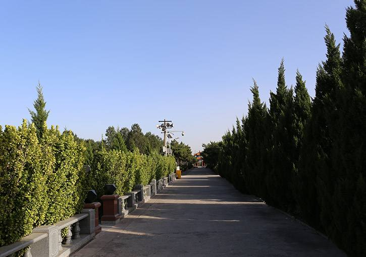 太子峪陵园绿化