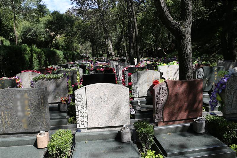 八达岭陵园墓区环境