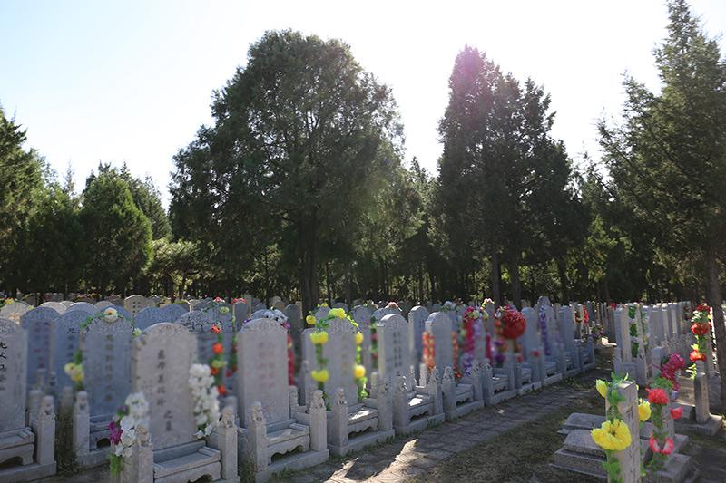 老墓区碑型