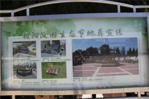 陵园公告栏