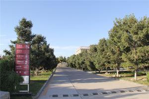 陵园主通道及指示标识
