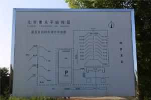陵园导向图