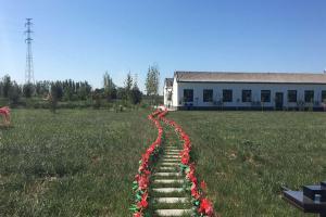 公墓园区绿化