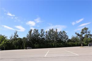 陵园停车场