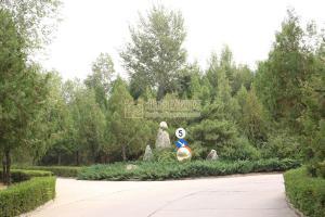 中华永久陵园树葬景观
