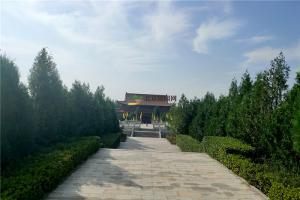 园区绿化景观